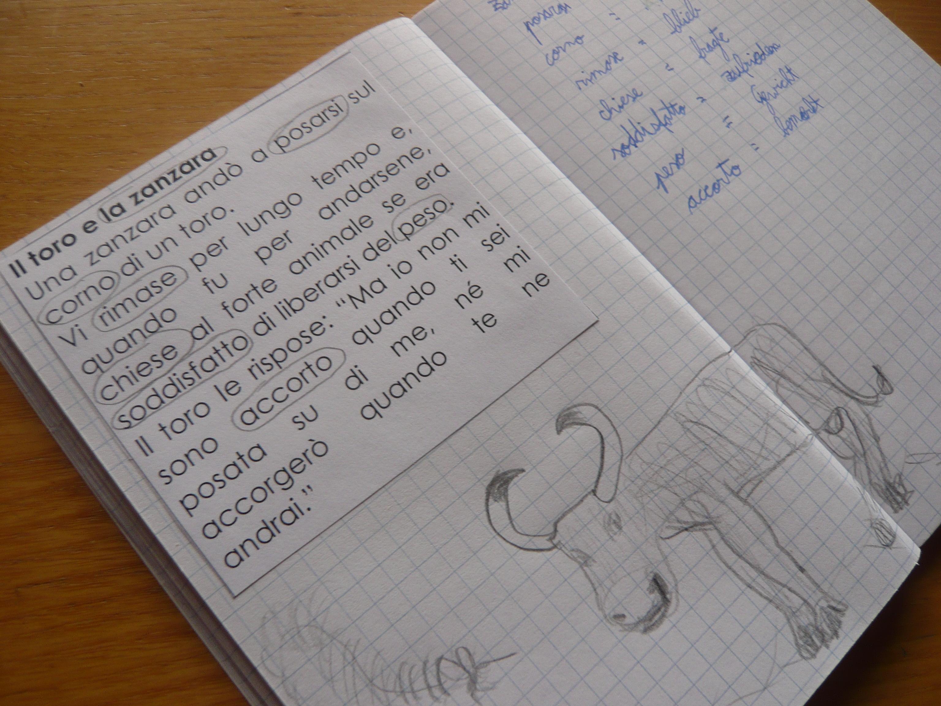 English   Buntblume   Seite 2